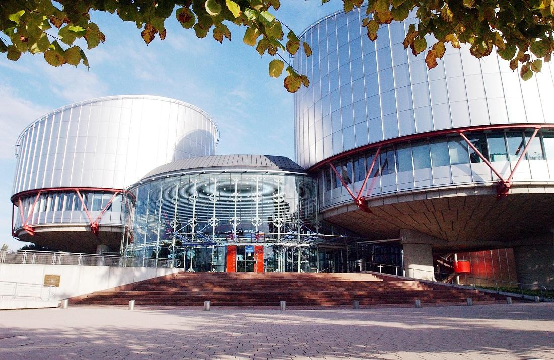 Welche Aufgabe hat der Europarat?