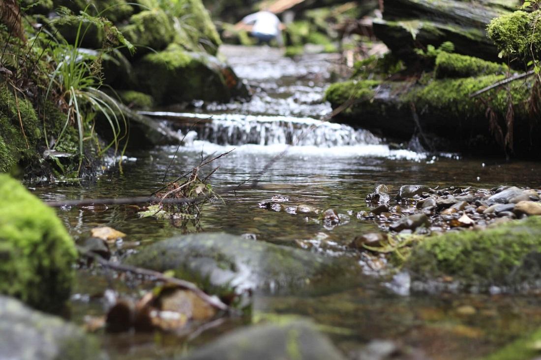 Wasserrahmenrichtlinie: Die nachhaltige Nutzung von Wasser